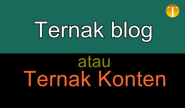 ternak-blog